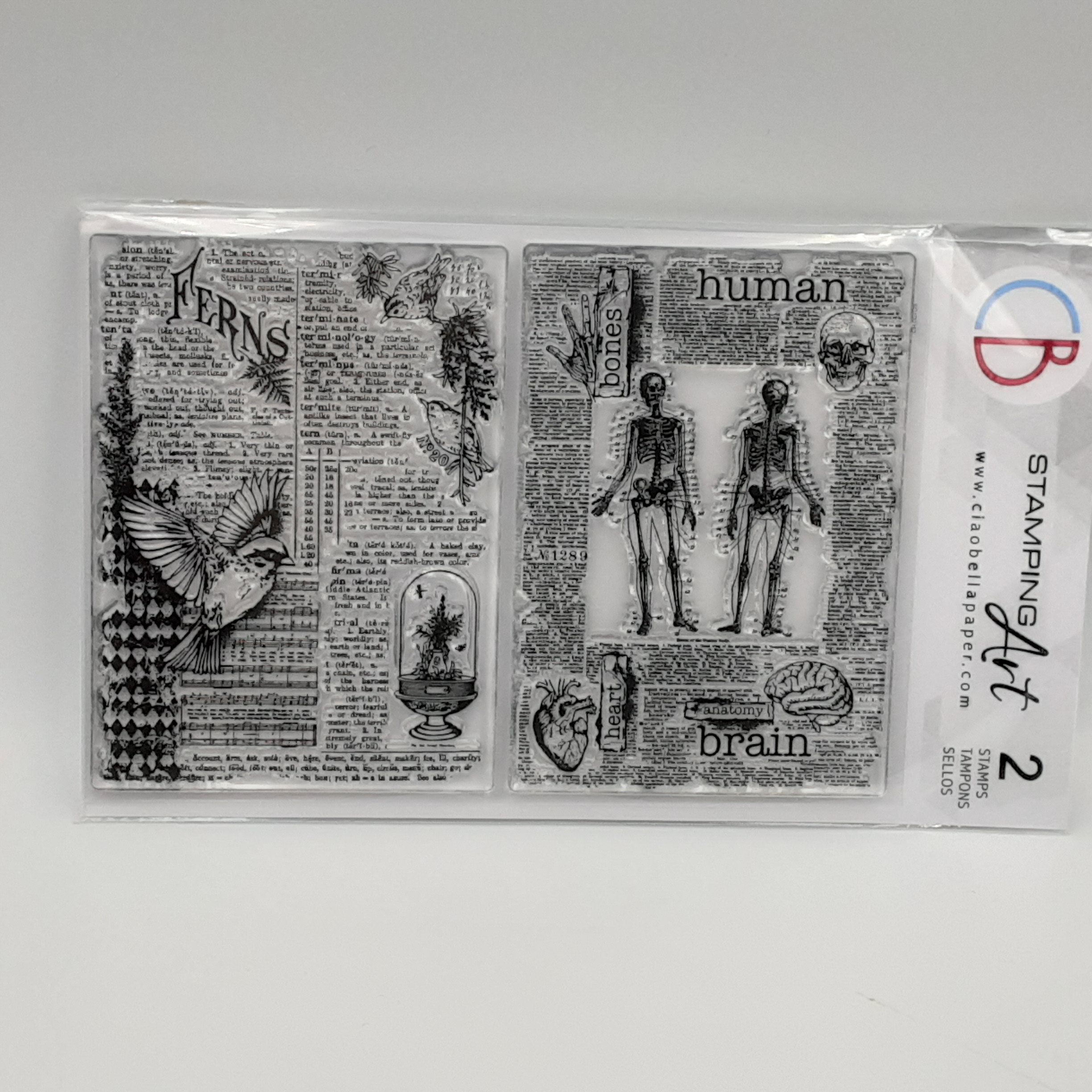 clear stamp human & nature